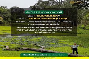 ''วันป่าไม้โลก'' หรือ